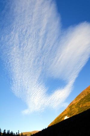 cirrus: Cirrus clouds over Lake Okatomi in Glacier National Park