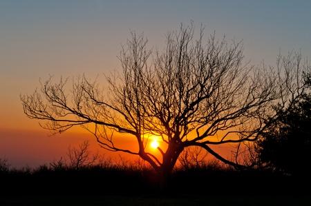 Coucher de soleil sur Chauve Grégoire dans les Smoky Mountains Banque d'images - 13578751