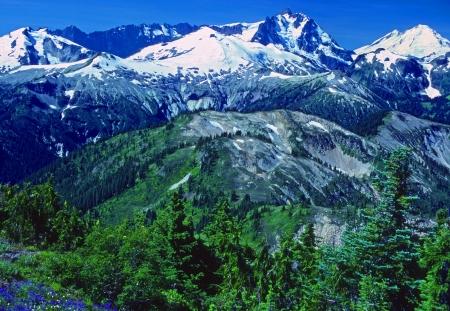 north ridge: The North Cascades in Summer from the Copper Ridge Trail