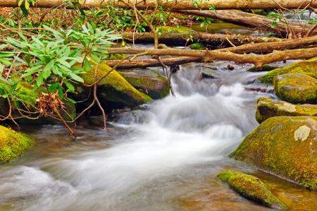 mile: Twenty Mile Creek in the Smoky Mountains Stock Photo