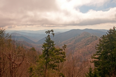 newfound gap: Newfound Gap in Early Spring in the Smoky Mountains