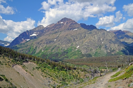 national scenic trail: Rising wolf mountain from the scenic point trail in Glacier national Park