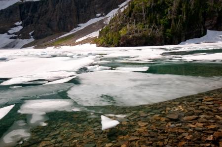 빙하 국립 공원의 빙산 호수에 얼음
