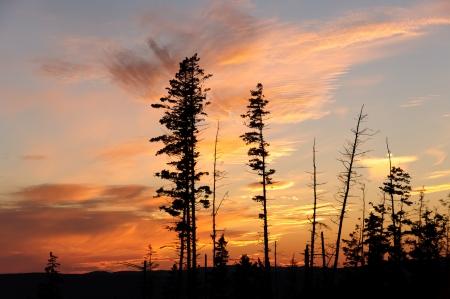 Sunset at Five Islands Provincial Park in Nova Scotia photo