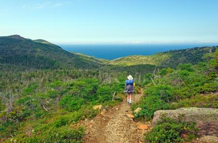 バックパッカーの緑豊かな庭園の歩道グロスモーン国立公園でのハイキング