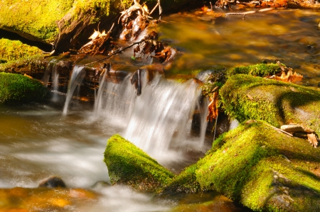 Twenty Mile Creek in early Spring in the Smoky Mountains photo