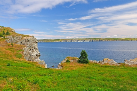 roberts: Bay Roberts Coastal trail in Newfoundland