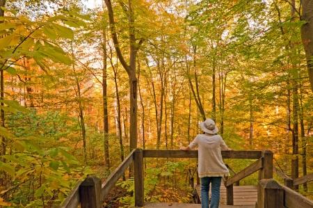 自然歩道ブラウン国州立公園秋のインディアナ州の人 写真素材
