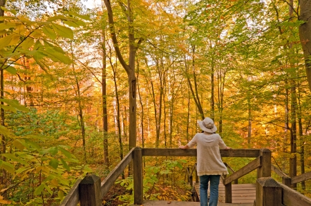 Person on Nature Trail in Brown Country State Park in Indiana in Fall Stock Photo