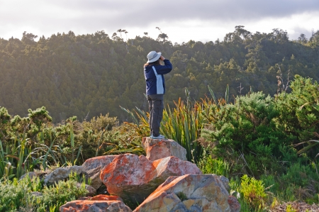 bird watcher: Birdwatcher observing birds near Okarito, New Zealand Stock Photo