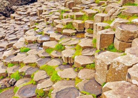 northern ireland: Details of the Columns in the Giants Causeway in Northern Ireland