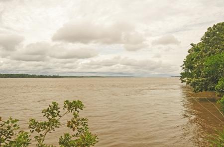 rio amazonas: El r�o Amazonas cerca de Iquitos, Per�, en temporada de aguas altas