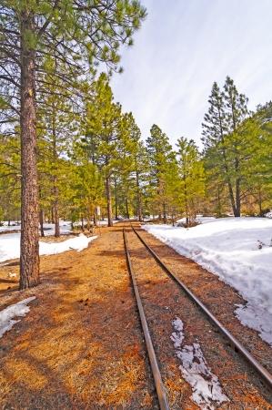 narrow gauge railroad: Narrow Gauge Railroad siding in Southern Colorado