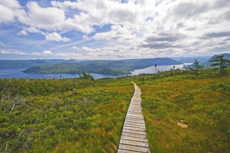 Heading down the Signal Hill trail to Bonne Bay in Gros Morne National Park Standard-Bild