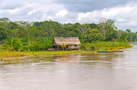 rio amazonas: Granja nativa a lo largo del r�o Amazonas en Per� Foto de archivo