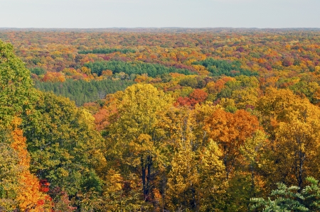 Oto�o Panorama de Brown County State Park en Indiana Foto de archivo - 20238988