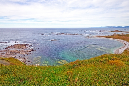 kaikoura: Seal Cove near Kaikoura New Zealand