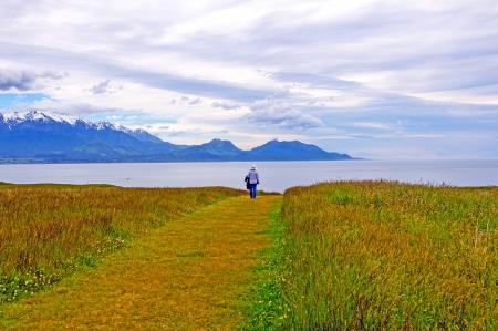 kaikoura: Mountains and Coastal Meadow above Kaikoura, New Zealand Stock Photo