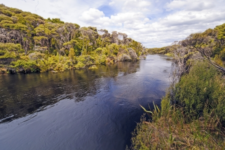 The Freshwater River on Stewart Island in New Zealand