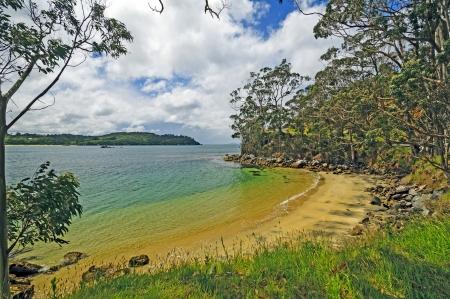 Ocean Beach environs de Half Moon Bay, sur l'île Stewart en Nouvelle-Zélande Banque d'images - 21264154