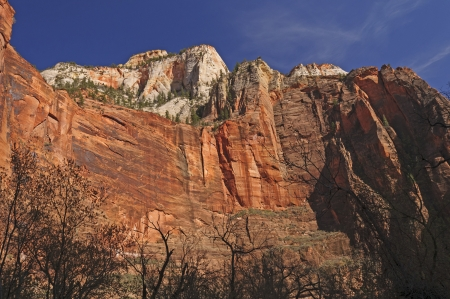 The Great White Throne from Zion Canyon in Zion National Park photo