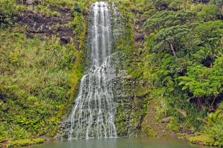 Karekare Falls on the North Island of New Zealand photo