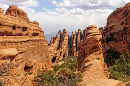 Sandstone Fins in a Narrow Canyon in Arches National Park photo