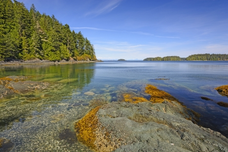 hardy: Remote Bay on the North Coast of Vancouver Island