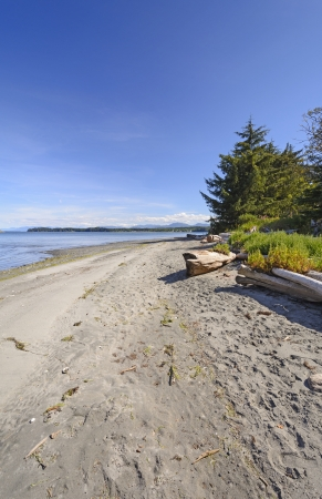 hardy: Remote Beach near Port Hardy on Vancouver Island Stock Photo