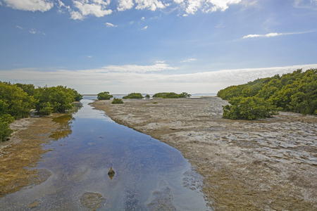 bight: Snake Bight Creek entering into Florida Bay in the Everglades at Low Tide