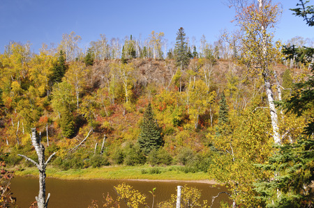 Fall Colors along the Gooseberry River in Minnesota