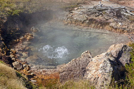 boiling: Boiling Water in a Thermal Pool in Artist