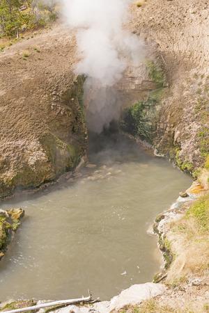 warm water: Stoom en warm water bij Dragon