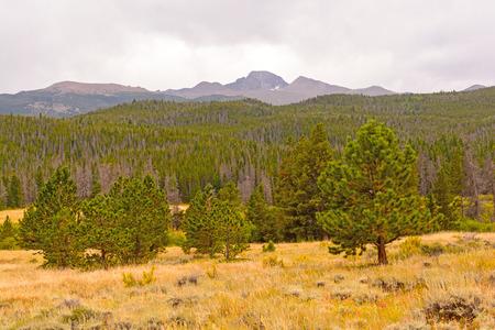 longs peak: Longs Peak Viewed from Moraine Park in Rocky Mountain National Park