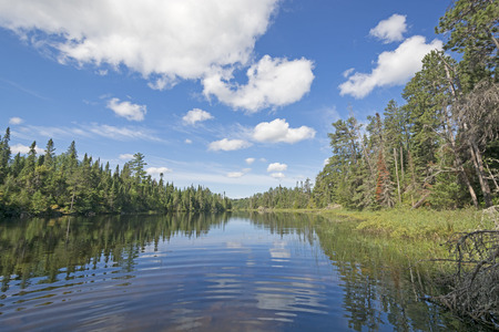minnesota woods: Sheltered Cove on Saganagons Lake in the Quetico