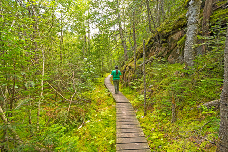 orphan: Hiking into a Green Wilderness on the Orphan Lake Trail in Lake Superior Provincial Park