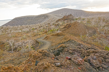 scoria: Spatter Cones and Volcanic Rock on Isabella Island in the Galapagos
