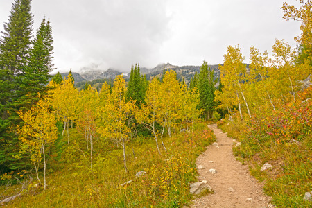 jenny: Fall Colors on the Jenny Lake Trail in Grand Tetons National Park in Wyoming Stock Photo