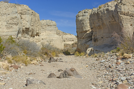 arroyo: Dry Riverbed in a Tuff Canyon in Big Bend National Park in Texas