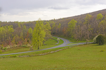 turnpike: Early Spring on a the Blue Ridge Parkway in Virginia