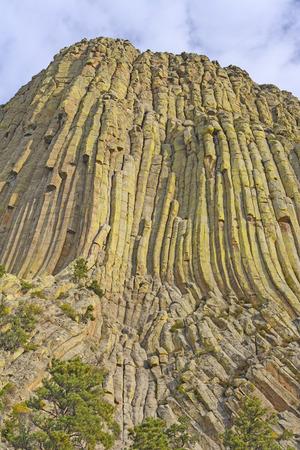 columnar: Columnar jointing on Devils Tower in Wyoming