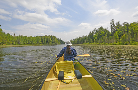 crooked: Canoer on a Crooked Lake in the Sylvania Wilderness in Northern Michigan Stock Photo