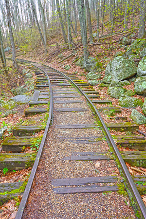 forest railroad: Old Railroad in the Forest of the Blue Ridge Parkway in Virginia