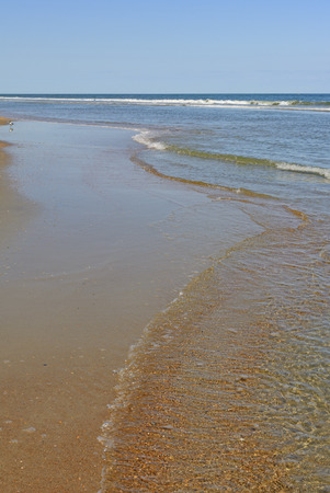 hatteras: Calm Shore on a Sunny Day on Ocracoke Island on the Outer Banks of North Carolina