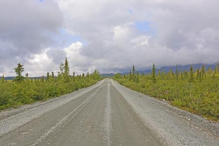 tiaga: Wilderness Road in the Tiaga on the Denali Highway in Alaska Stock Photo