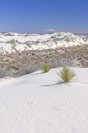 montañas nevadas: White Sands y montañas nevadas en el White Sands Monumento Nacional en Nuevo México Foto de archivo
