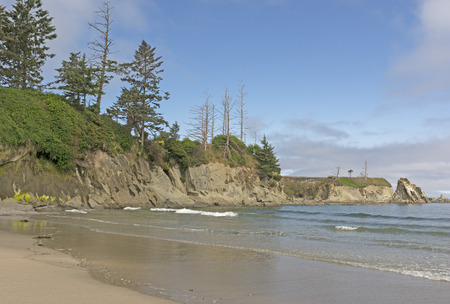 oregon coast: Rugged Coastal Beach on a Sunny Day in Lighthouse Beach on the Oregon Coast near Coos Bay Stock Photo