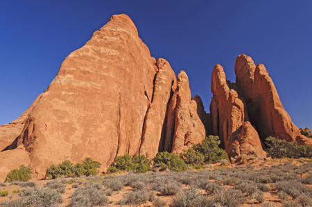 red rock: Red Rock Fins Reach for the Sky in Arches National Park in Utah Stock Photo