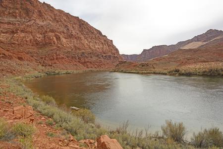 colorado river: Colorado River at Lees Ferry in the Glen Canyon National Recreation Area in Arizona