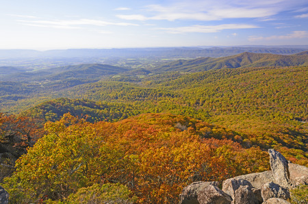 appalachian: Appalachian Panorama in the Fall from Mary;s Rock in Shenandoah National Park in Virginia